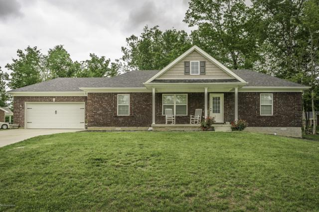 120 Chattanooga Dr, Coxs Creek, KY 40013 (#1532449) :: The Sokoler-Medley Team