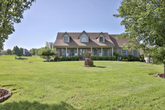 489 Pearl Ct, Taylorsville, KY 40071 (#1532618) :: The Sokoler-Medley Team