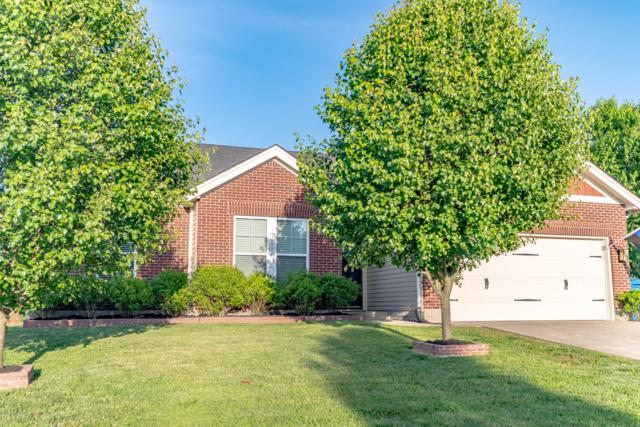 340 Tipperary Crossing, Shelbyville, KY 40065 (#1532706) :: Team Panella