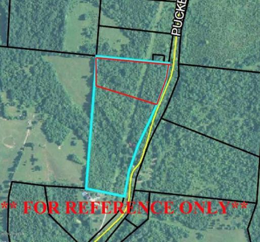 4A Puckett Rd, Lawrenceburg, KY 40342 (#1532872) :: The Sokoler-Medley Team