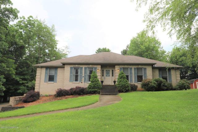 238 Pinnacle Dr, Brandenburg, KY 40108 (#1533738) :: Keller Williams Louisville East