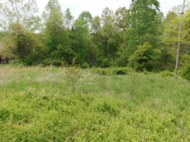 17 Mercer Bend Rd, Leitchfield, KY 42754 (#1535065) :: The Stiller Group