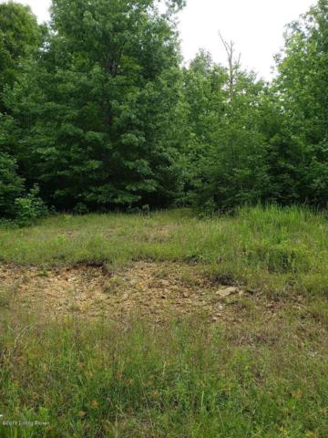 Lot 515 Hog Knob Dr, Falls Of Rough, KY 40119 (#1535138) :: Team Panella