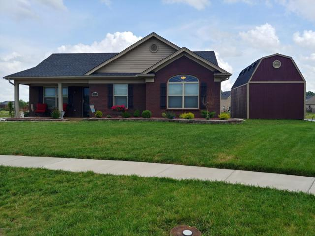252 Mandarin Ct, Shepherdsville, KY 40165 (#1536531) :: The Sokoler-Medley Team