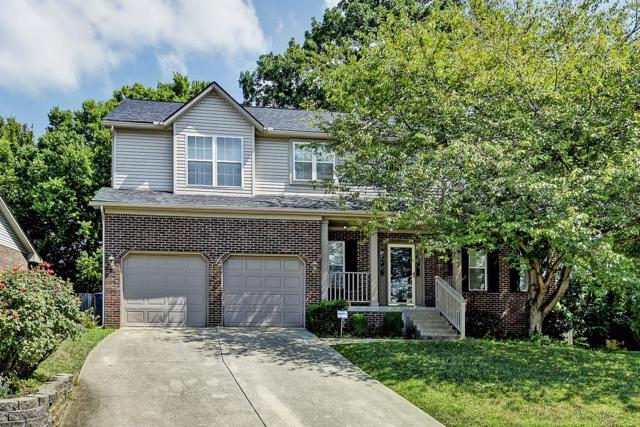 7404 Warrenton Hill Ct, Louisville, KY 40291 (#1536940) :: The Sokoler-Medley Team