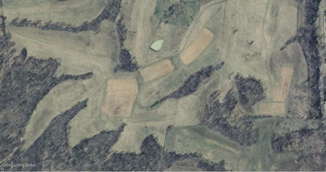 5 George Creek Rd, Carrollton, KY 41008 (#1537419) :: The Sokoler-Medley Team
