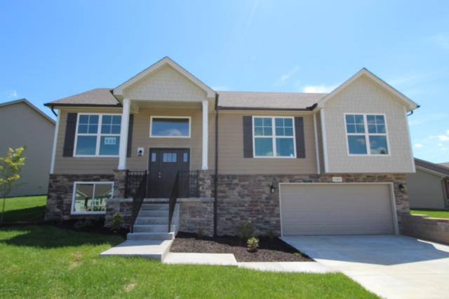 11407 Pebble Trace, Louisville, KY 40229 (#1537599) :: The Sokoler-Medley Team