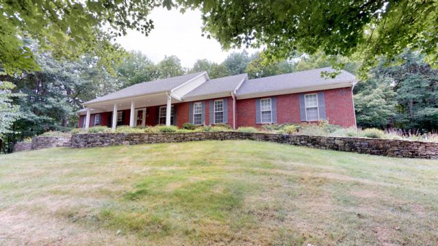 16021 Plum Creek Trail, Louisville, KY 40299 (#1537937) :: The Sokoler-Medley Team