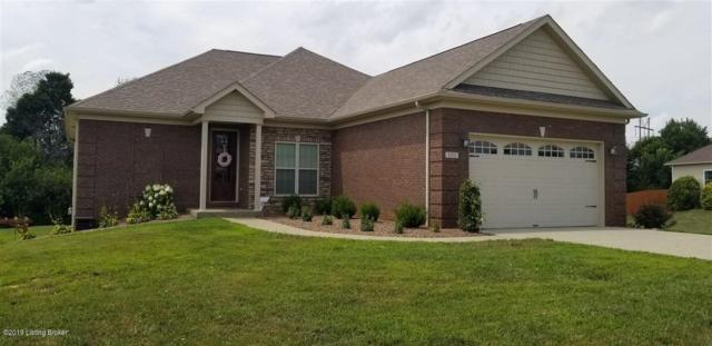 103 Wellesly Ct, Cecilia, KY 42724 (#1539796) :: The Sokoler-Medley Team