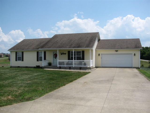 135 Adirondack Ct, Cecilia, KY 42724 (#1540117) :: The Sokoler-Medley Team