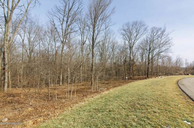 Lot 367 Persimmon Ridge Dr, Louisville, KY 40245 (#1551206) :: The Sokoler-Medley Team