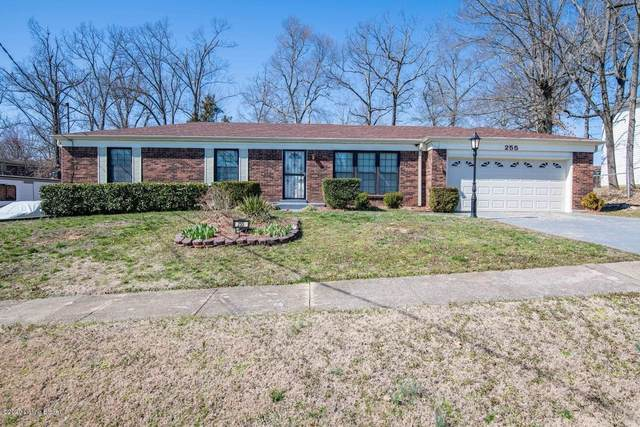 255 Indiana Trail, Radcliff, KY 40160 (#1554867) :: The Sokoler-Medley Team