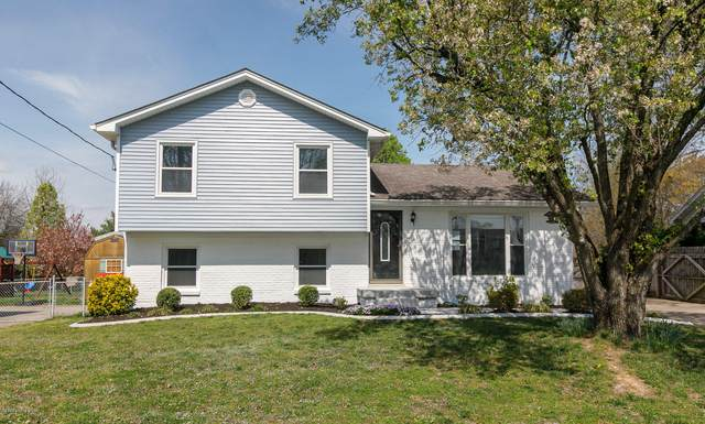 3603 Birnamwood Ct, Louisville, KY 40258 (#1556555) :: Team Panella