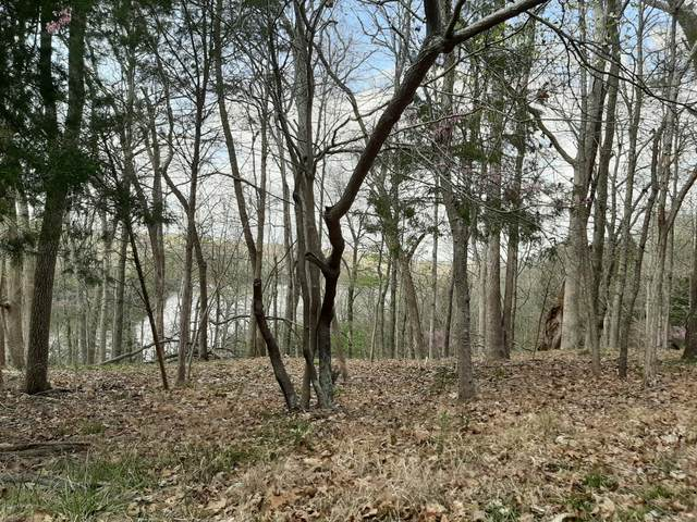 173 Ridge Pole Rd, Brandenburg, KY 40108 (#1556812) :: The Sokoler-Medley Team