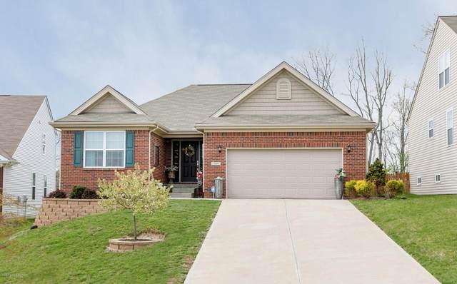 206 Brookfield Hills Ct, Louisville, KY 40245 (#1559697) :: Team Panella