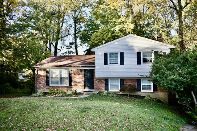 8001 Casualwood Ct, Louisville, KY 40291 (#1572535) :: Impact Homes Group