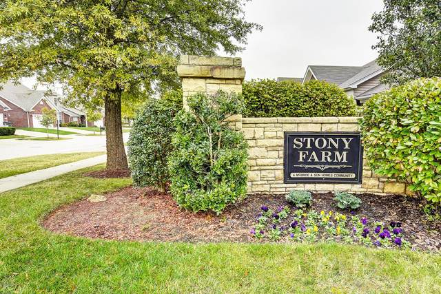 8608 Stony Falls Way, Louisville, KY 40299 (#1572938) :: Team Panella
