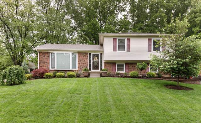 6807 Riggs Dr, Louisville, KY 40291 (#1584925) :: The Stiller Group