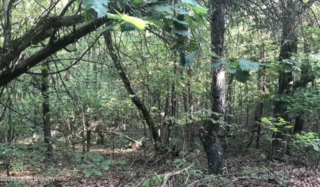 100 Shaw Creek Rd, Big Clifty, KY 42712 (#1588820) :: Team Panella