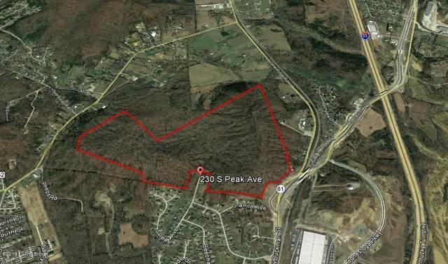 230 N Peak Ave, Shepherdsville, KY 40165 (#1589035) :: The Sokoler Team
