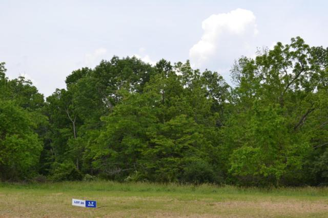 Lot 28 Glory View Ln, Crestwood, KY 40014 (#1385595) :: The Sokoler-Medley Team