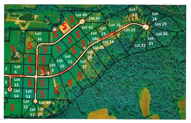 41 Locust Grove Trail, Bedford, KY 40006 (#1471879) :: The Sokoler-Medley Team
