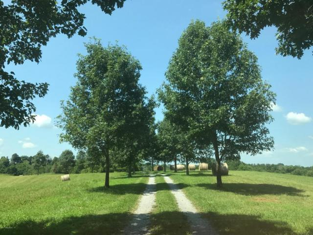 5961-A Mt. Eden Rd Tract A, Shelbyville, KY 40065 (#1482882) :: Team Panella
