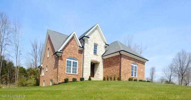 13007 Vista Dr, Prospect, KY 40059 (#1490328) :: Segrest Group