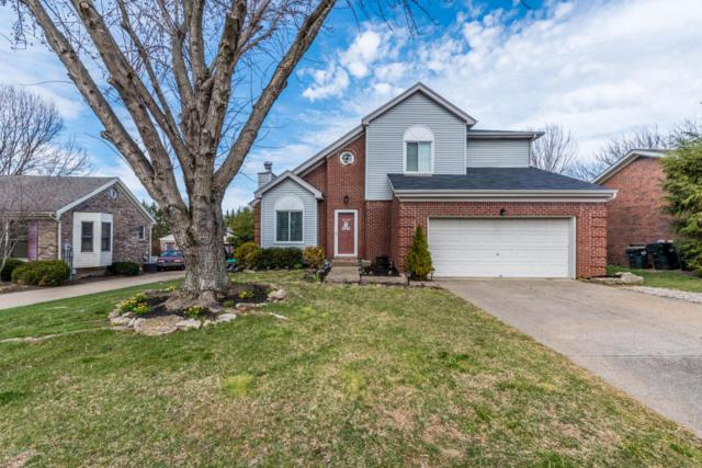 8815 Raintree Dr, Jeffersontown, KY 40220 (#1498394) :: Team Panella