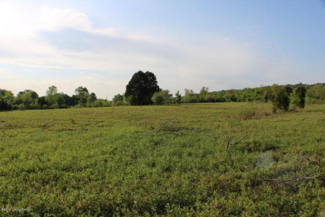 00 Cave Mill Rd, Leitchfield, KY 42754 (#1500974) :: Segrest Group
