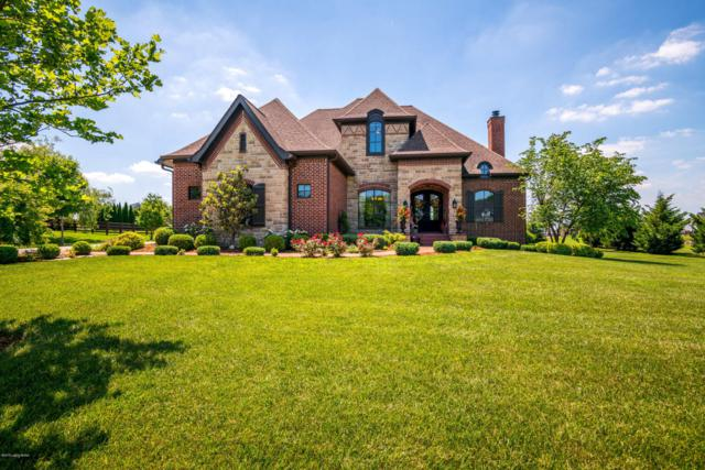 11300 Spring Hollow Ct, Prospect, KY 40059 (#1504430) :: The Sokoler-Medley Team