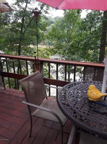 602 Rough River Resort, McDaniels, KY 40152 (#1506113) :: Segrest Group
