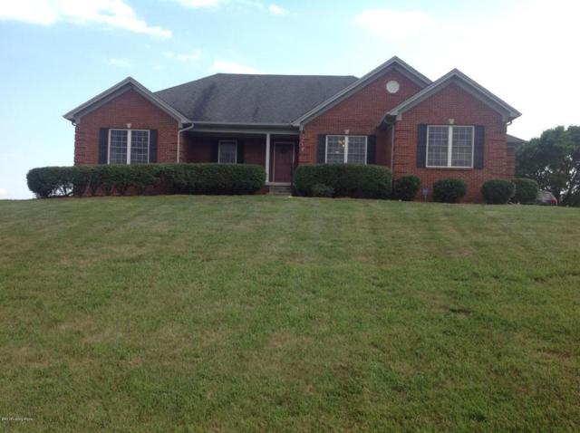 534 Arbor Green Way, Fisherville, KY 40023 (#1508467) :: The Sokoler-Medley Team