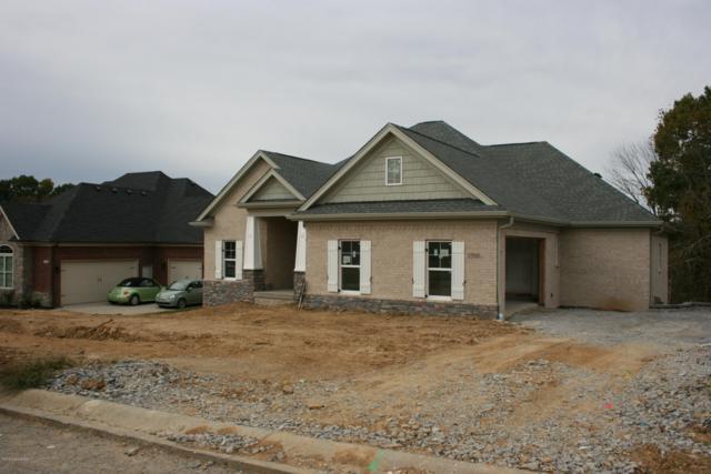 17906 Meremont Ridge Ct, Louisville, KY 40245 (#1509731) :: The Stiller Group