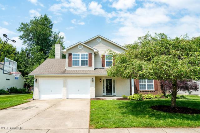 3810 Pecanwood Way, Louisville, KY 40299 (#1511000) :: Segrest Group