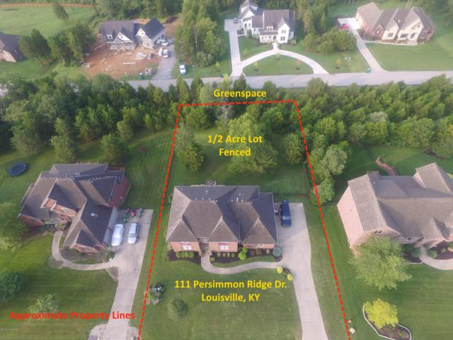 111 Persimmon Ridge Dr, Louisville, KY 40245 (#1512893) :: The Elizabeth Monarch Group