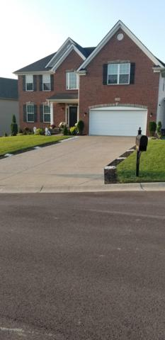 17908 Duckleigh Ct, Fisherville, KY 40023 (#1515277) :: The Stiller Group