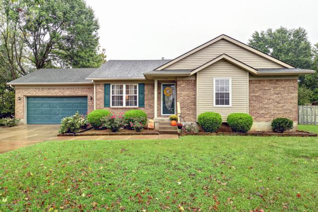 174 Cannon Ct, Louisville, KY 40229 (#1515326) :: Segrest Group