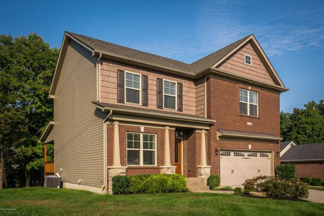6704 Brook Terrace Dr, Louisville, KY 40228 (#1516305) :: The Stiller Group
