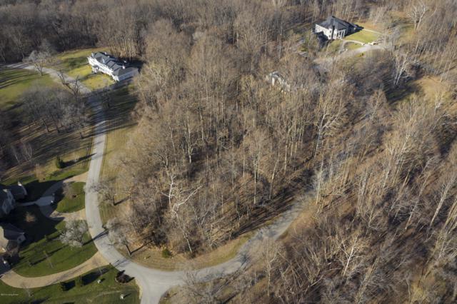 14452 River Glades Dr, Prospect, KY 40059 (#1522509) :: The Stiller Group