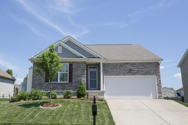 3008 Mary Crest Dr, Shelbyville, KY 40065 (#1531412) :: Team Panella