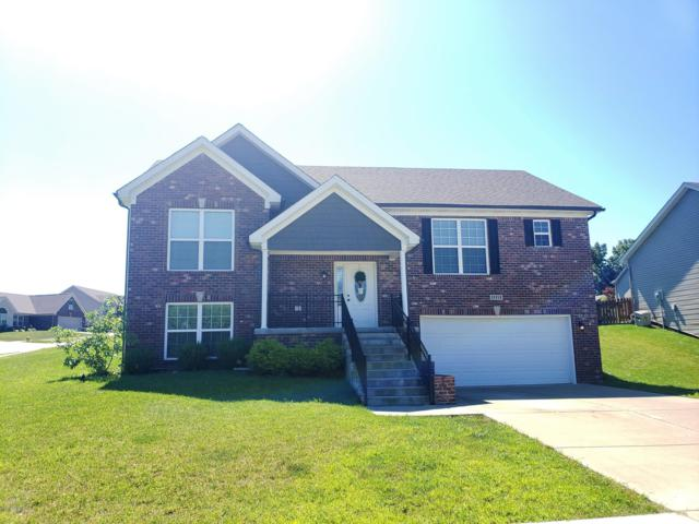 11113 Pebble Trace, Louisville, KY 40229 (#1536792) :: The Sokoler-Medley Team