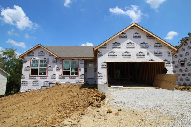 11412 Pebble Trace, Louisville, KY 40229 (#1537595) :: The Sokoler-Medley Team