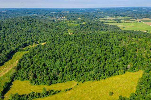 1 Old Lone Oak Rd, Clarkson, KY 42726 (#1562841) :: The Price Group
