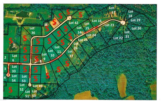 42 Locust Grove Trail, Bedford, KY 40006 (#1471891) :: The Sokoler-Medley Team