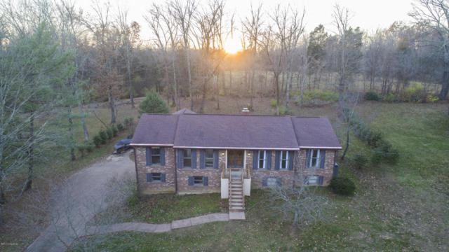 203 Parkview Dr, Louisville, KY 40245 (#1490252) :: Team Panella