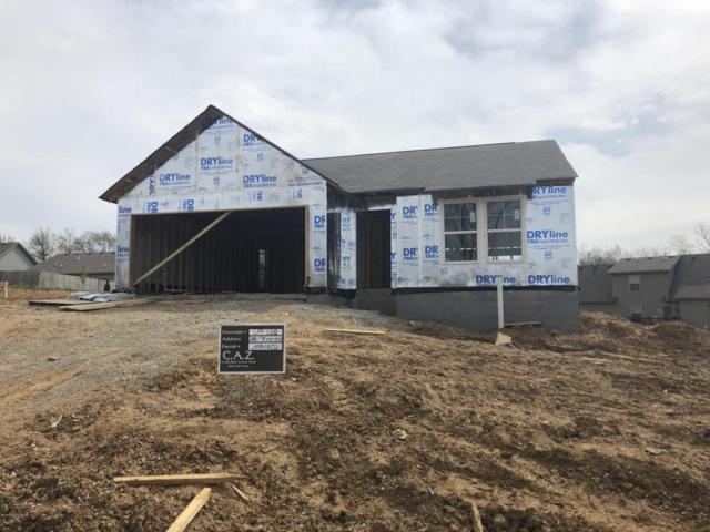 208 Masons View Ct, Shelbyville, KY 40065 (#1496032) :: The Stiller Group