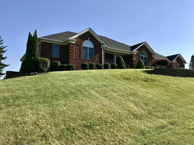 1911 Clarke Pointe Dr, Crestwood, KY 40014 (#1506302) :: The Sokoler-Medley Team