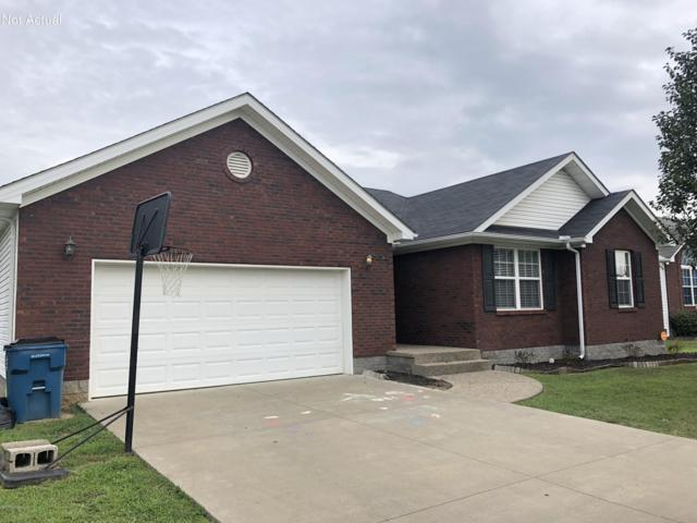 331 Madison Rae Blvd, Shepherdsville, KY 40165 (#1512135) :: Team Panella