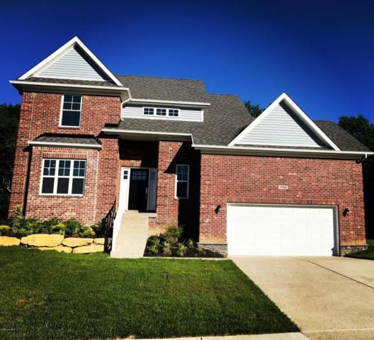 1206 Ava Pearls Way, Louisville, KY 40245 (#1484384) :: Segrest Group
